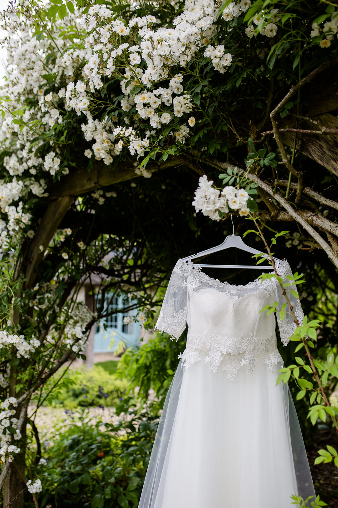 Lace wedding dress from The Organza Room Amesbury Wiltshire, hanging in a rose bush